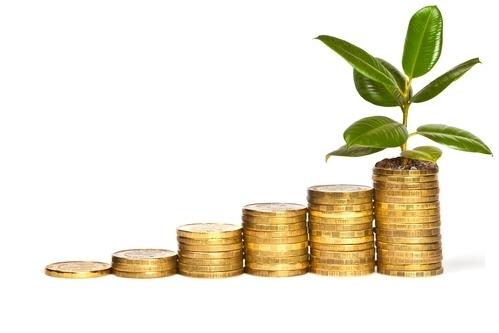 Загод средняя заработная плата вБрянской области подросла на9,5 процента